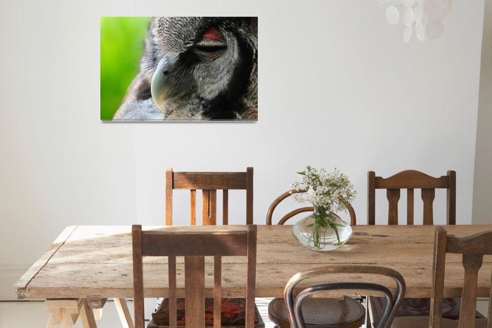 """Giant Eagle Owl&quot  (2012) by sergioamiti"