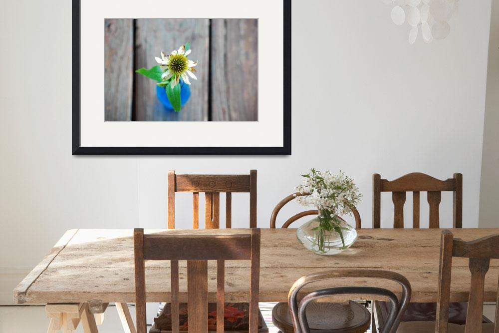 """""""Coneflower in blue vase on wooden planks&quot  (2009) by PurrpleX"""