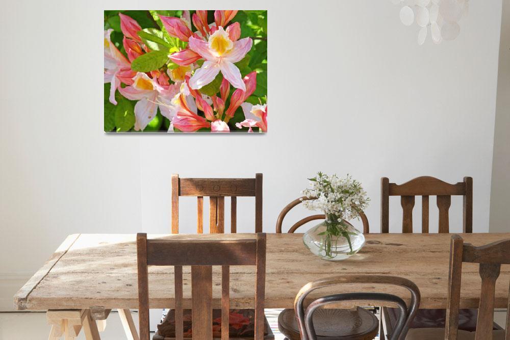 """Floral Art Prints Pink Rhodies Flowers canvas""  (2010) by BasleeTroutman"