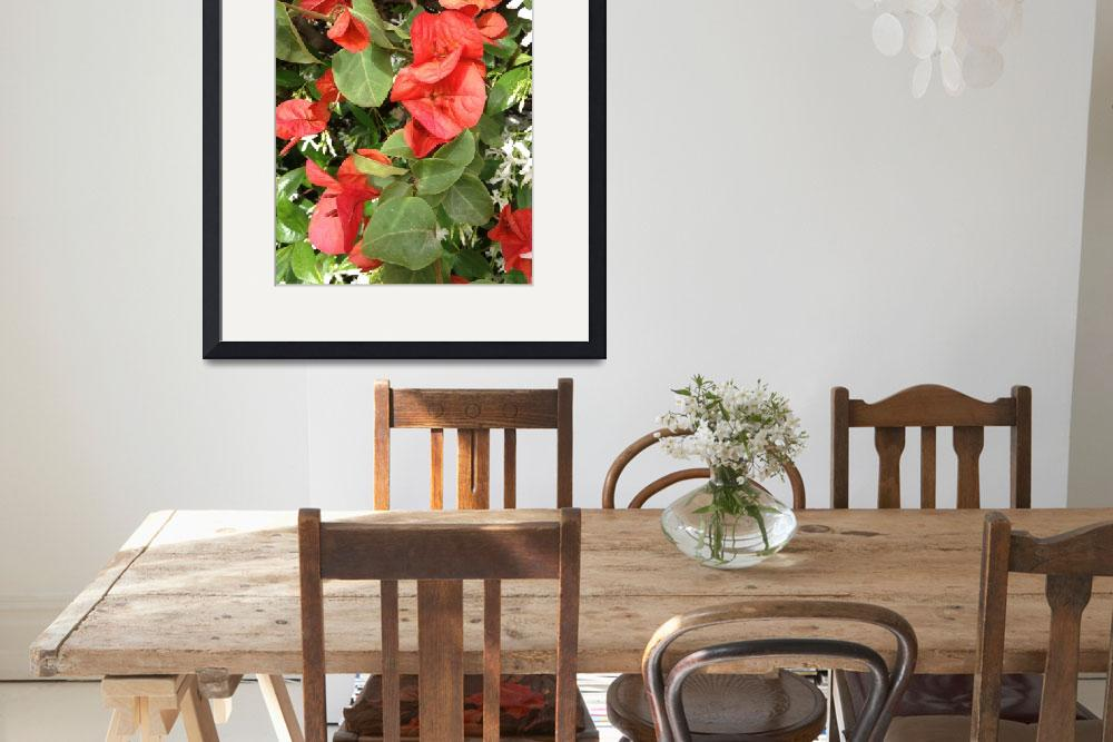 """""""Red_flowers_Isabela_Dunklin_Italy_Nature&quot  by easyfigure"""
