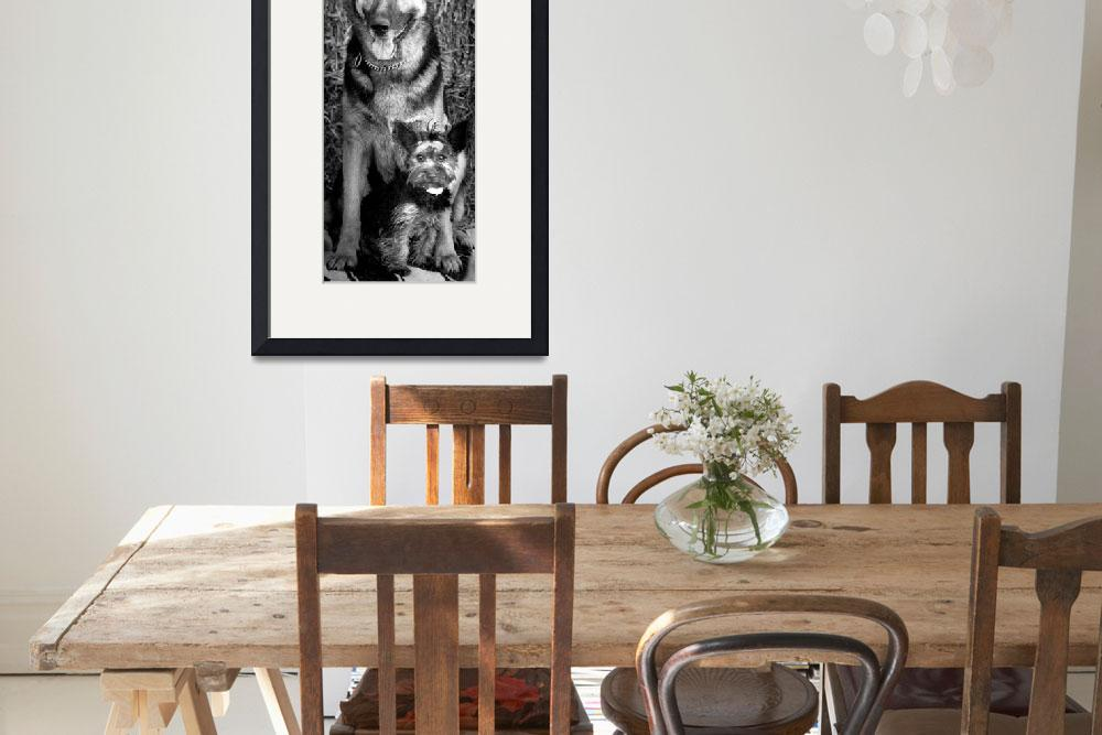 """""""German Shepard and Yorkie&quot  by RetroImagesArchive"""