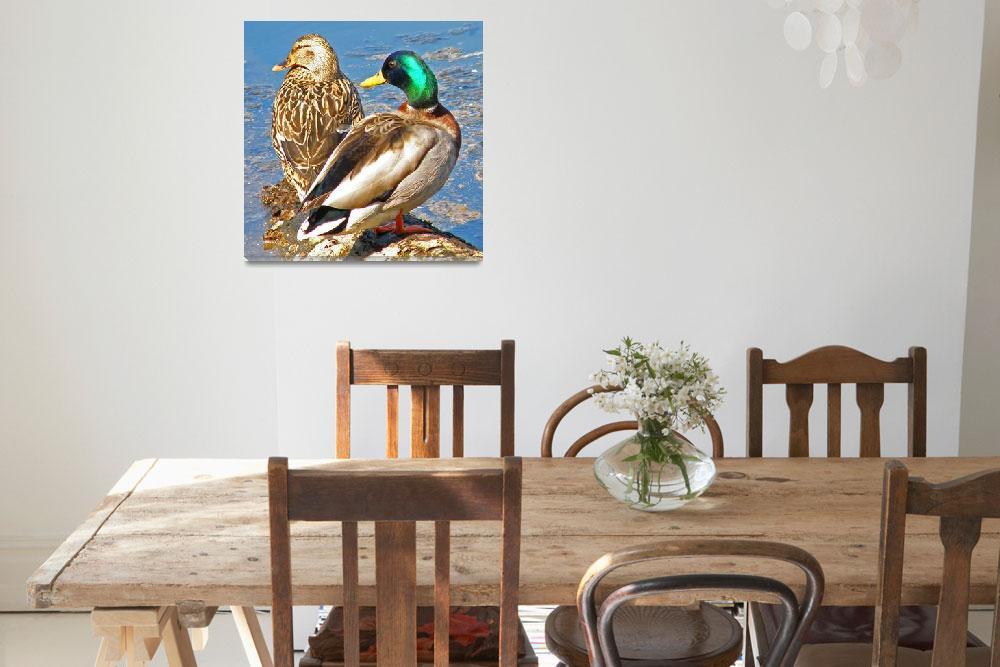 """A Ducky Pair""  (2009) by shelshots"