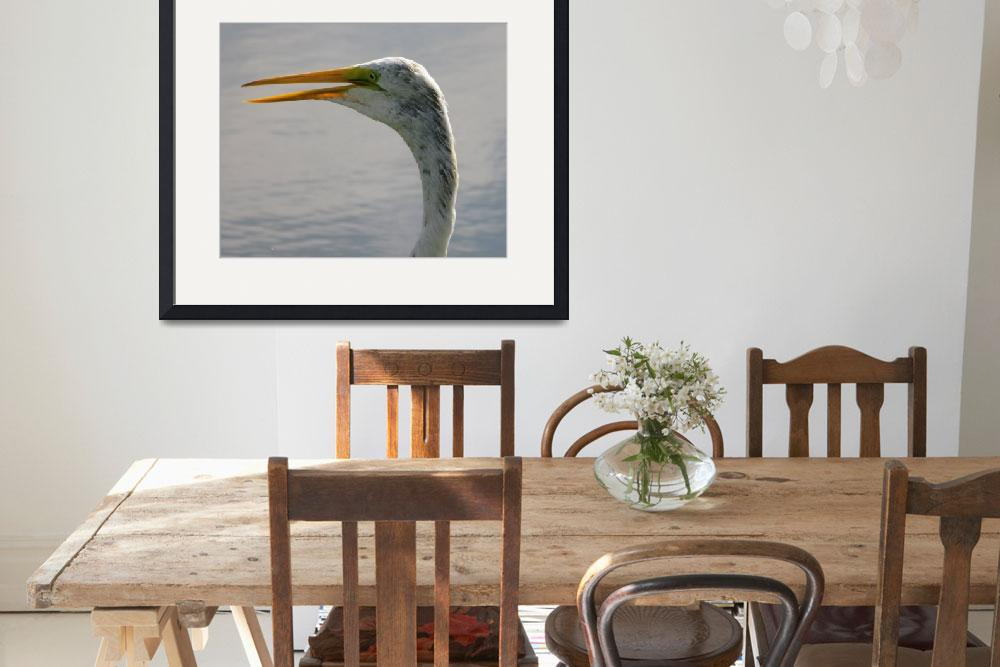 """""""Great Egret 7""""  (2018) by natureviews"""