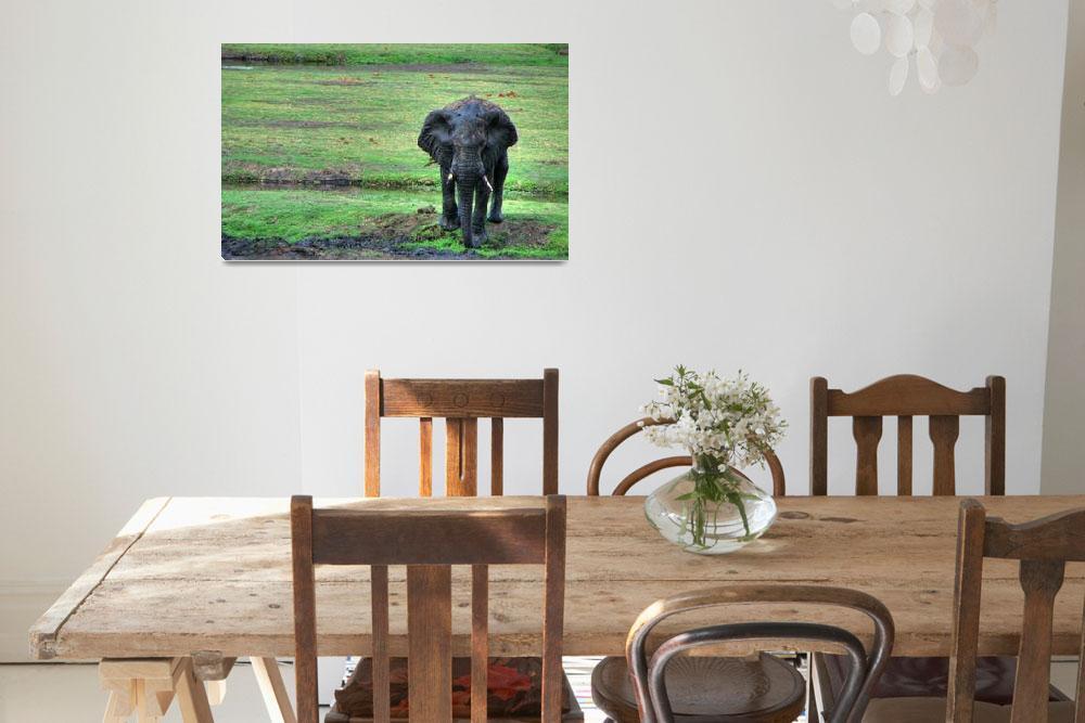 """Elephant in mud&quot  (2007) by michaelgrabowski"
