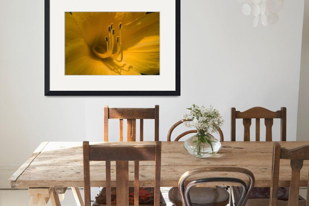 """""""Yellow Tiger Lily No. 3""""  (2007) by FoxtowerPhotography"""
