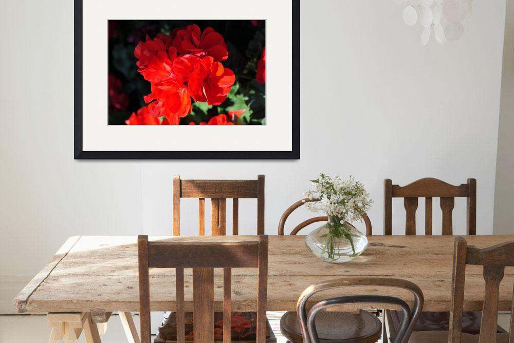 """""""Deep Red Flower partial shade&quot  (2011) by ElliePhotoArt"""