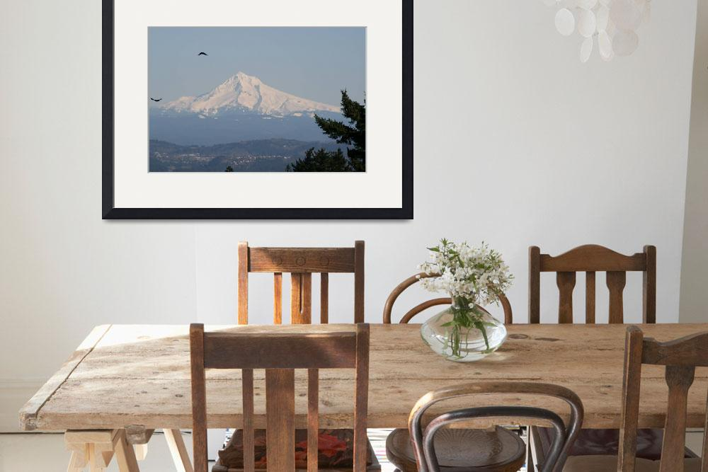 """""""Mt Hood from Portland Council Crest Feb (8)&quot  by BarbaraBerger"""