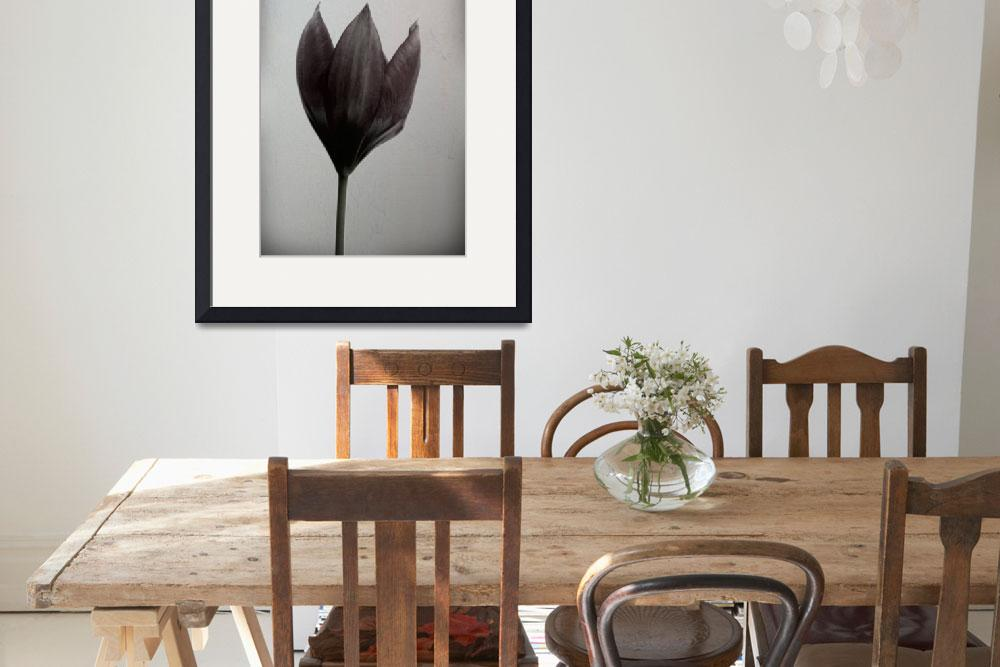 """""""Wild tulip&quot  (2015) by ginton"""