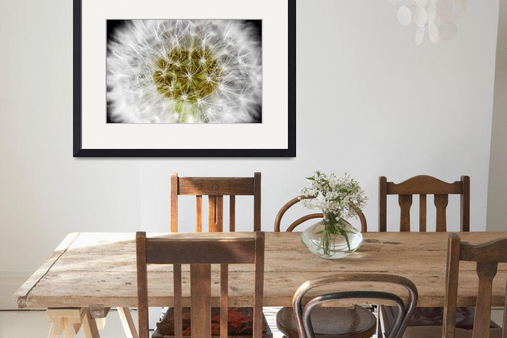 """""""Abstract Nature White Dandelion Floral Macro A1&quot  (2017) by Ricardos"""
