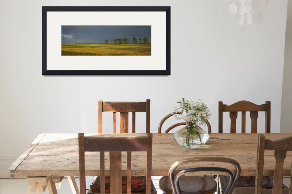 """Wheat Field Normandy France&quot  by Panoramic_Images"