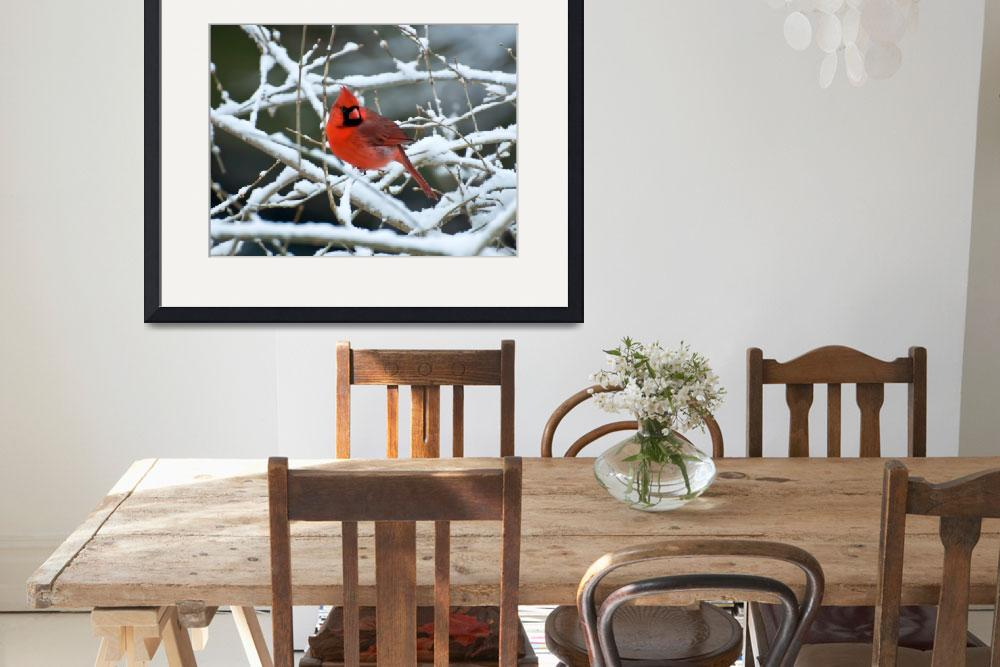 """""""Cardinal on Snowy Branches&quot  by ReidKasprowicz"""