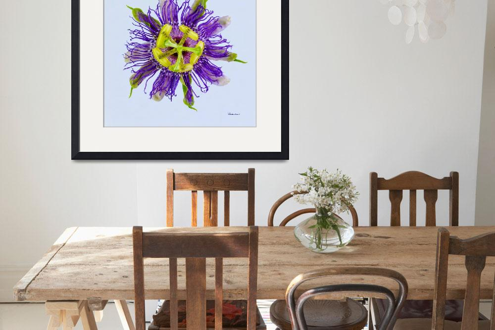 """""""Yellow Green and Violet Passion Flower 50674b""""  (2018) by Ricardos"""