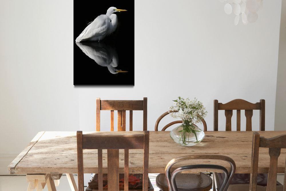"""Great Egret Reflection""  by DenisW"
