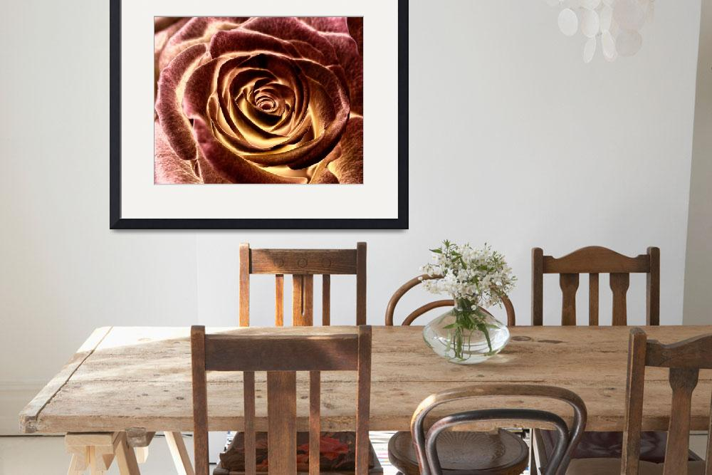"""""""the rose&quot  (2009) by ERDAL"""