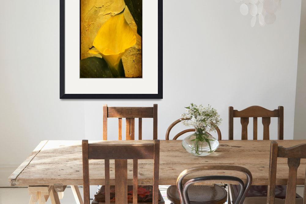 """""""Yellow Calla Lily - Texture Enhanced&quot  (2015) by MotherNature1"""