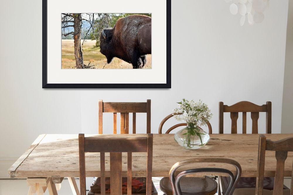 """""""Bull Bison""""  (2014) by WindmillFarms"""