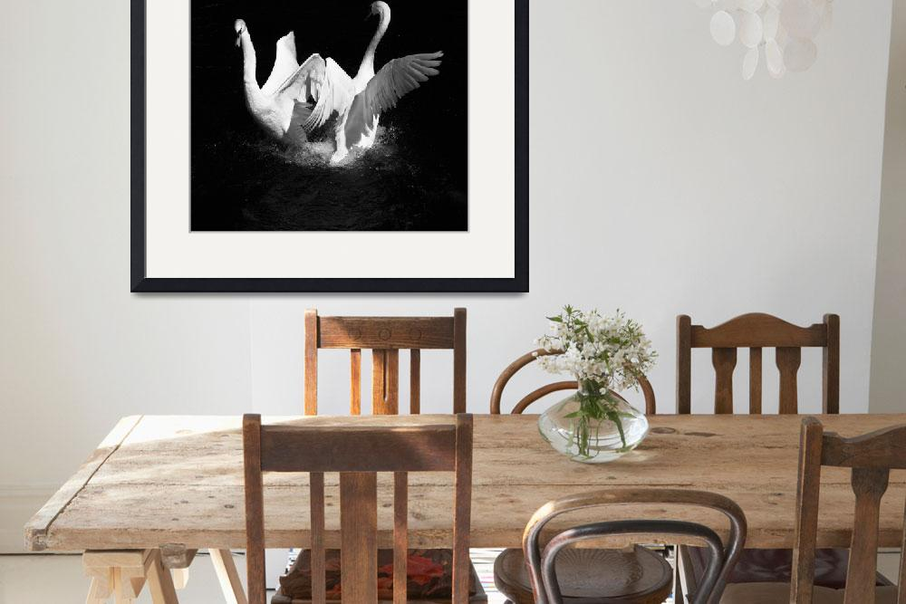 """""""Dancing Swans&quot  (2017) by LiamBowler"""