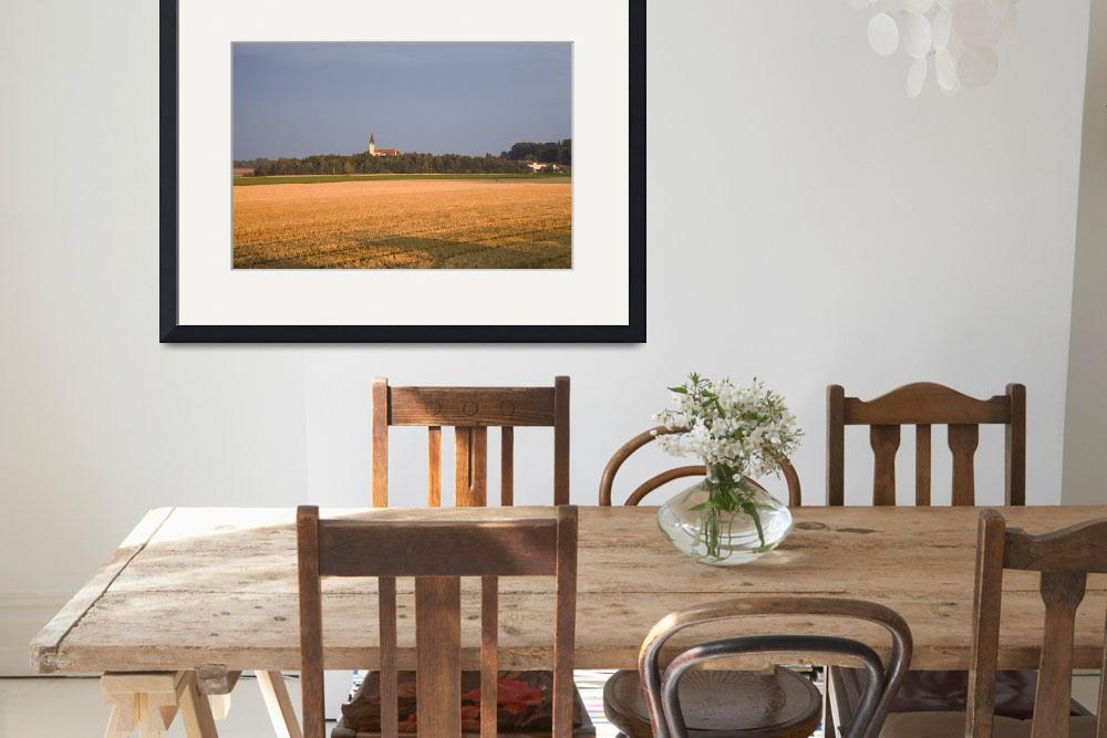 """""""Evening light over golden field&quot  by IanMiddletonphotography"""