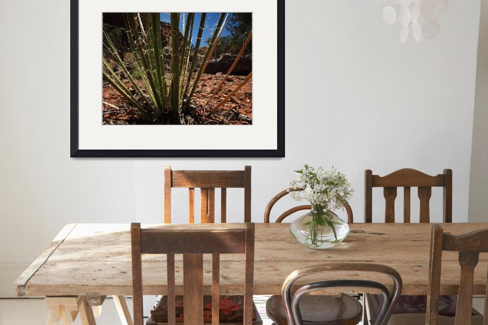 """""""Spiny Plant&quot  by danreedphotography"""