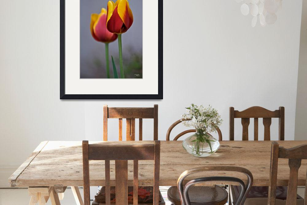 """Tulips""  (2008) by DigiPix"