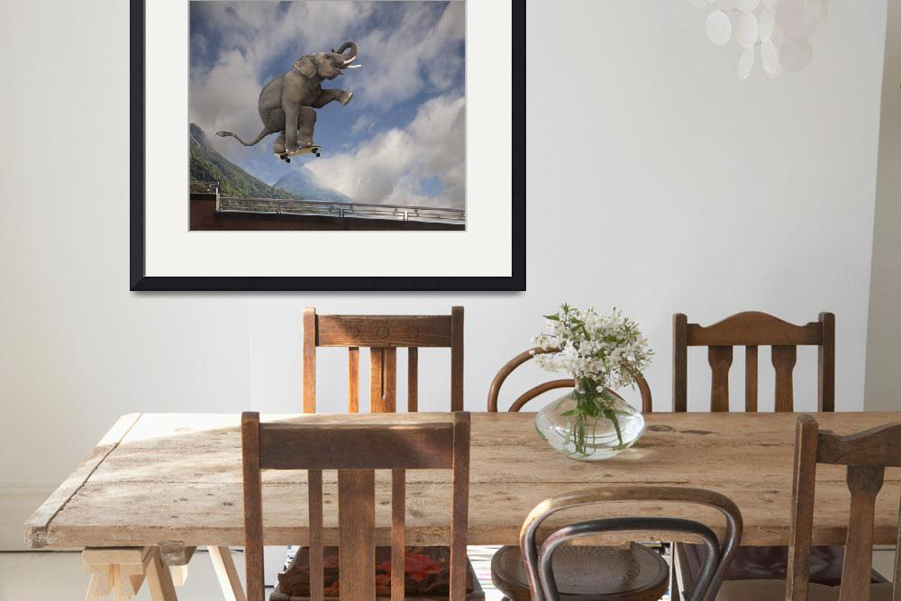 """""""Photo of Asian elephant catching air, skateboard&quot  (2010) by StephanieDRoeser"""