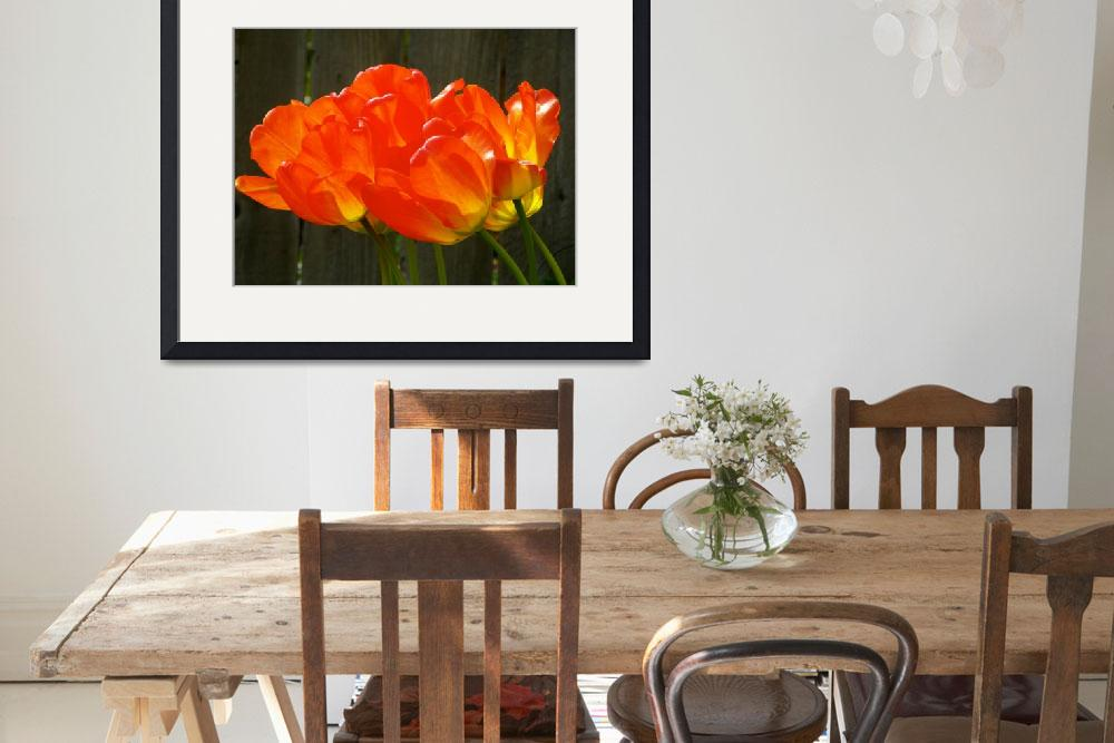 """""""Spring Tulip&quot  (2015) by vpicks"""