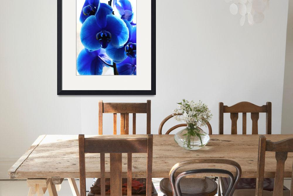 """""""Blue orchids portrait""""  (2014) by Bluejay36"""