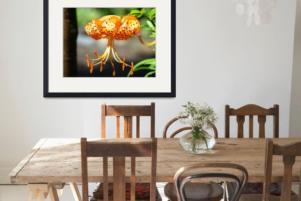 """""""LILIES ART Prints Canvas Framed Tiger Lily Flower&quot  (2009) by BasleeTroutman"""