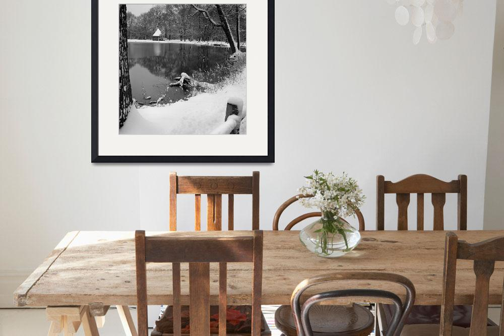 """""""Winter Pond&quot  by mtspace"""