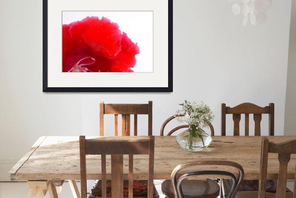 """""""RED FLOWER 2&quot  (2012) by peppe"""