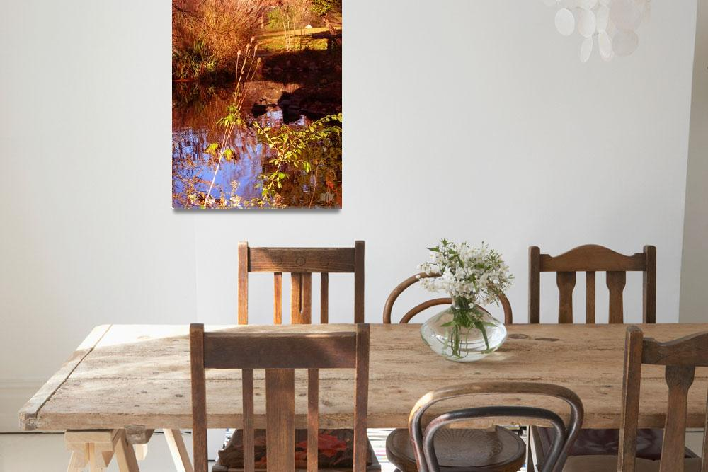 """Pampas Grass on Cranbrook Pond""  (2008) by garthglazier"
