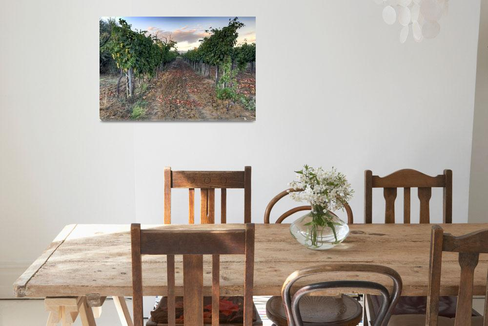 """Vineyard in Tuscany""  (2013) by spikeflutie"