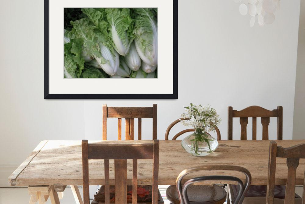 """""""Chinese Cabbage&quot  (2008) by OneMansPerspectives"""
