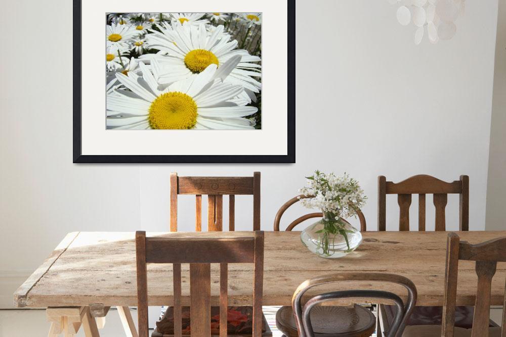 """""""Daisies Floral Art Prints White Daisy Flowers&quot  (2012) by BasleeTroutman"""