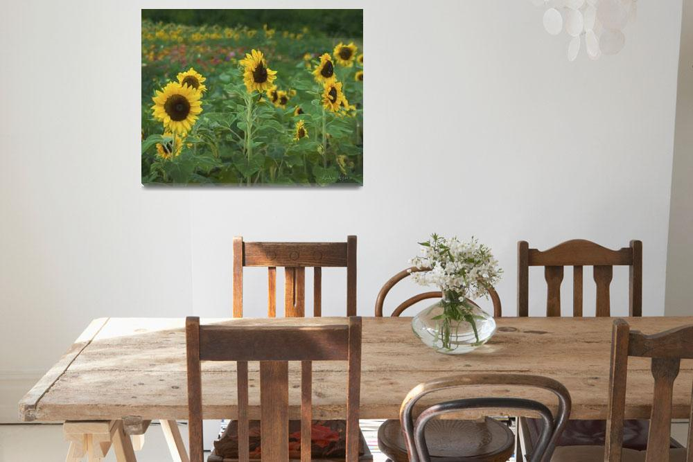 """Sunflower Field 2""  (2017) by LouiseReeves"