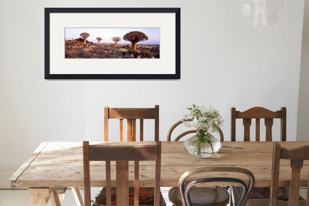 """""""Quiver Trees Namibia Africa""""  by Panoramic_Images"""