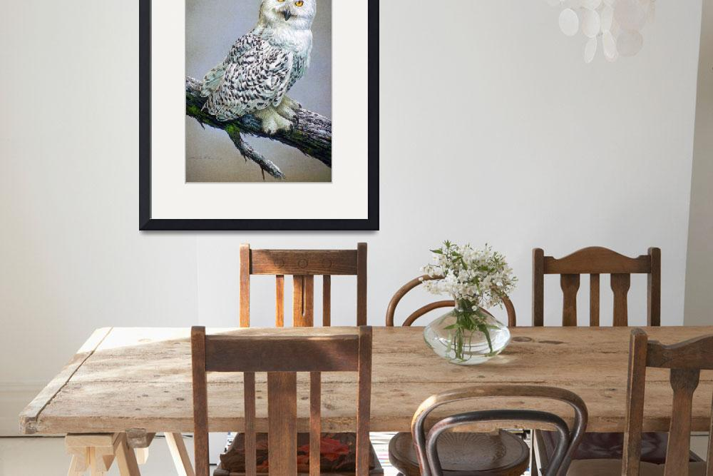 """""""Snowy Owl Study&quot  by ArtLoversOnline"""