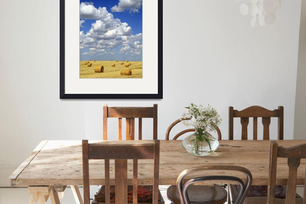 """""""Hay Bales With White Clouds&quot  by DesignPics"""