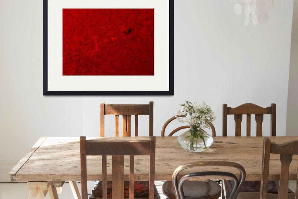 """""""H alpha Sun in red with sunspot""""  by stocktrekimages"""