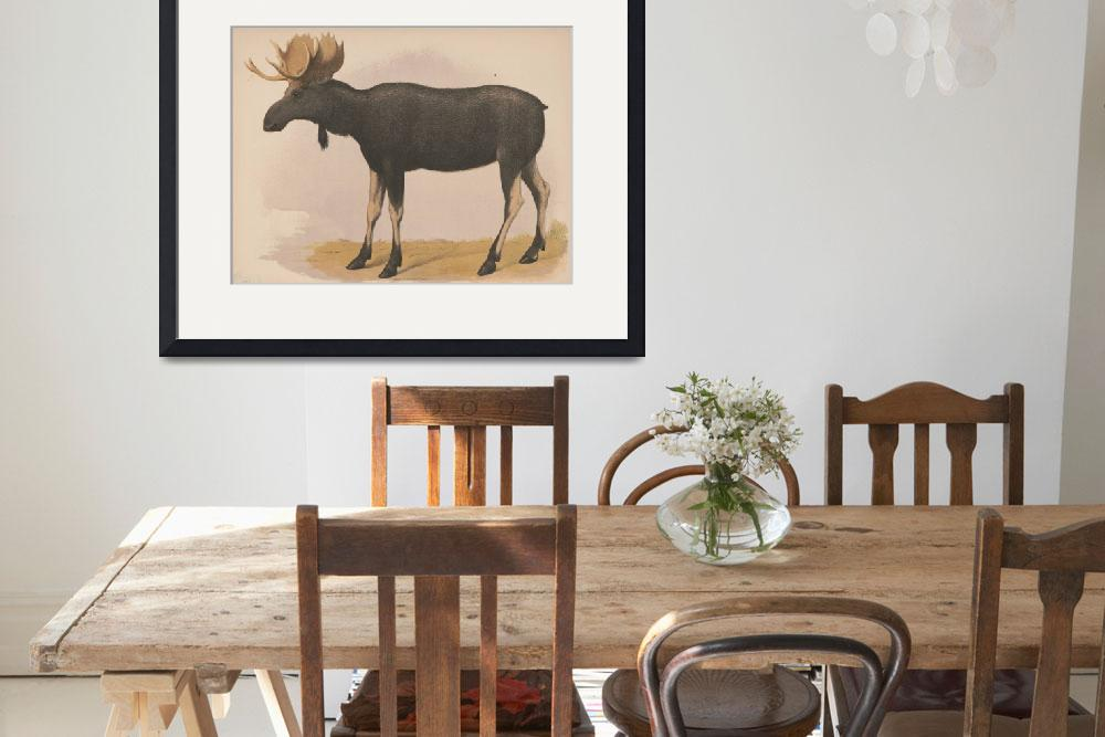 """""""Vintage Illustration of a Moose (1874)""""  by Alleycatshirts"""