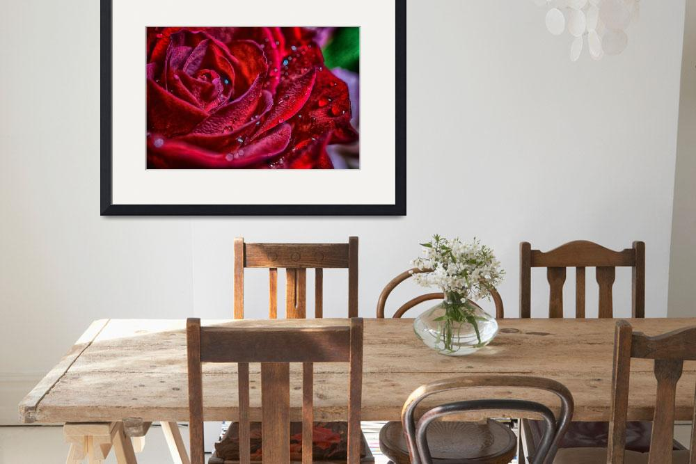 """""""Beautiful rose macro&quot  by Art_by_Lilia"""