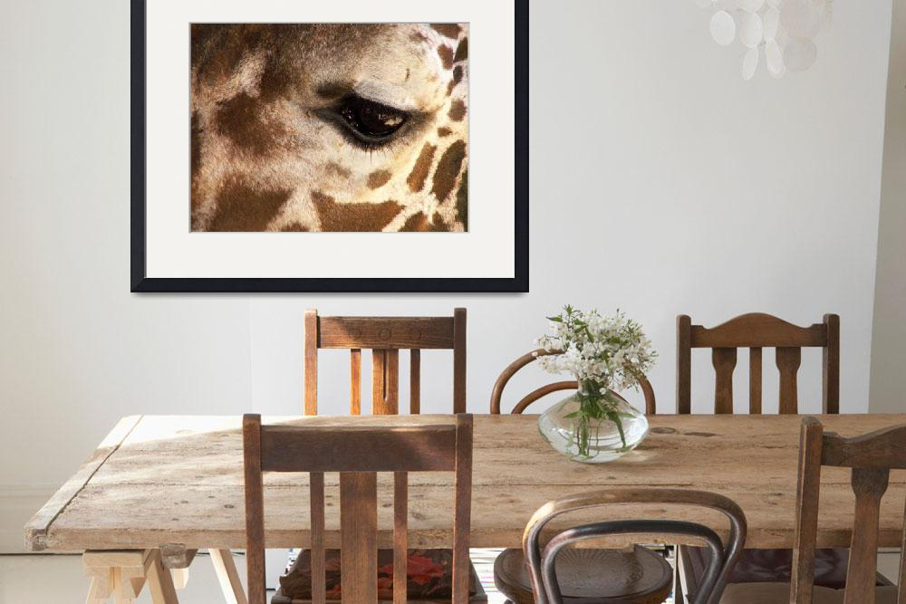 """""""Reticulated Giraffe Natures Spots&quot  by JMcQ"""