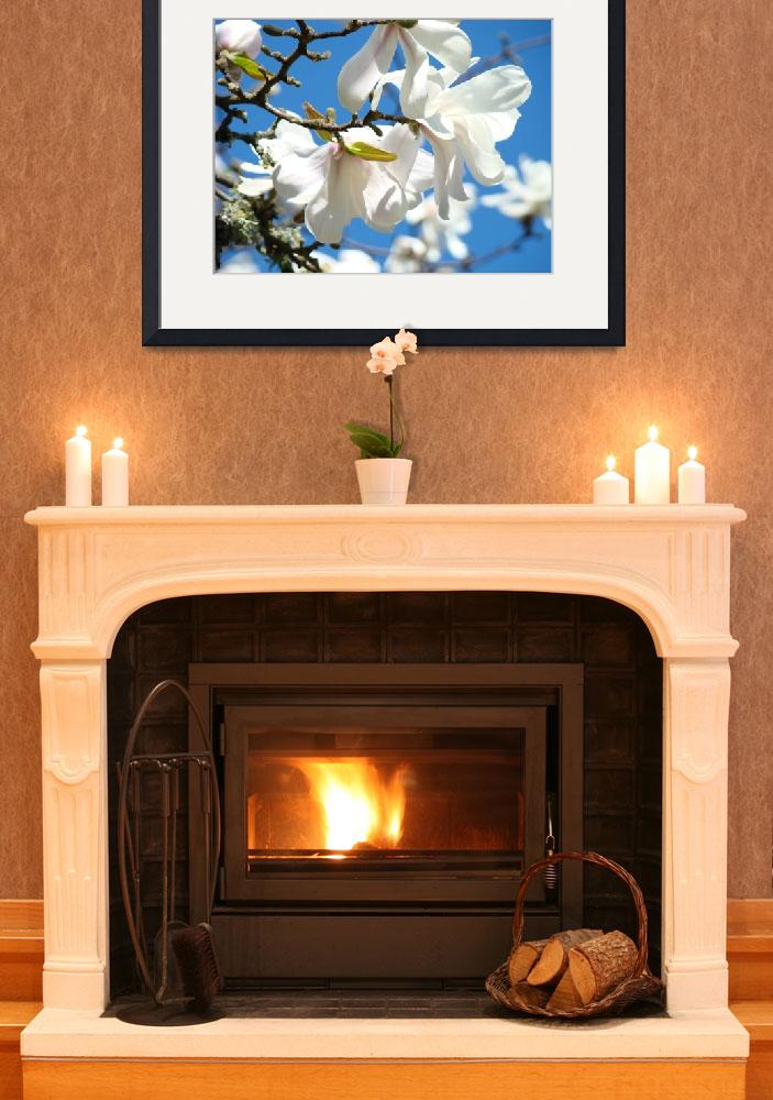 """""""Floral art White Magnolia Tree Flowers Blue Sky""""  (2011) by BasleeTroutman"""