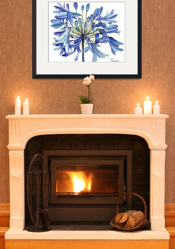 """Agapanthus Flower&quot  (2012) by esvb"