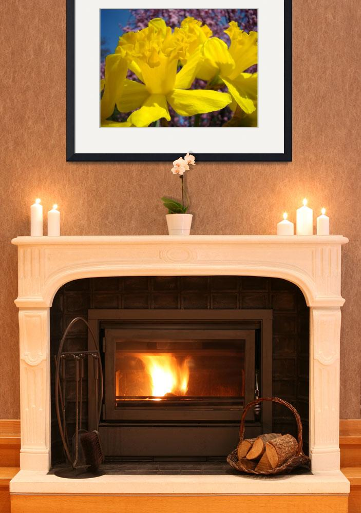 """""""Daffodils Flowers Glowing Spring Floral nature art&quot  (2014) by BasleeTroutman"""