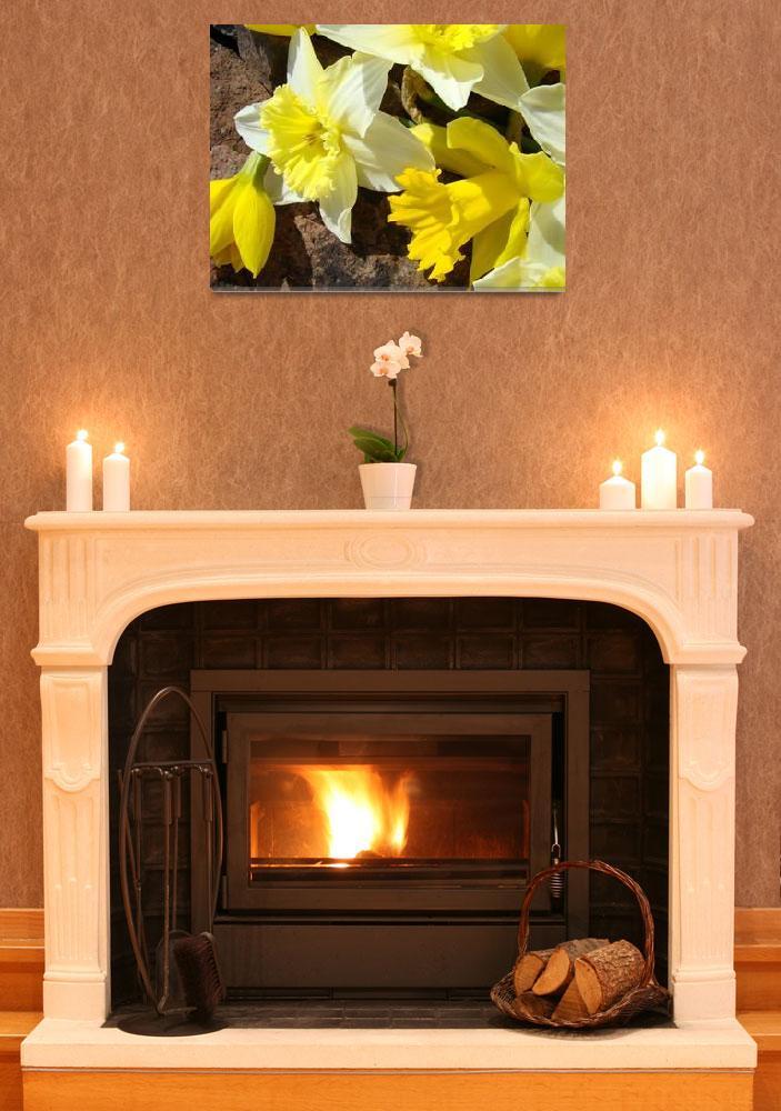 """Daffodils Garden 14 Spring Daffodil Flowers Art&quot  (2009) by BasleeTroutman"