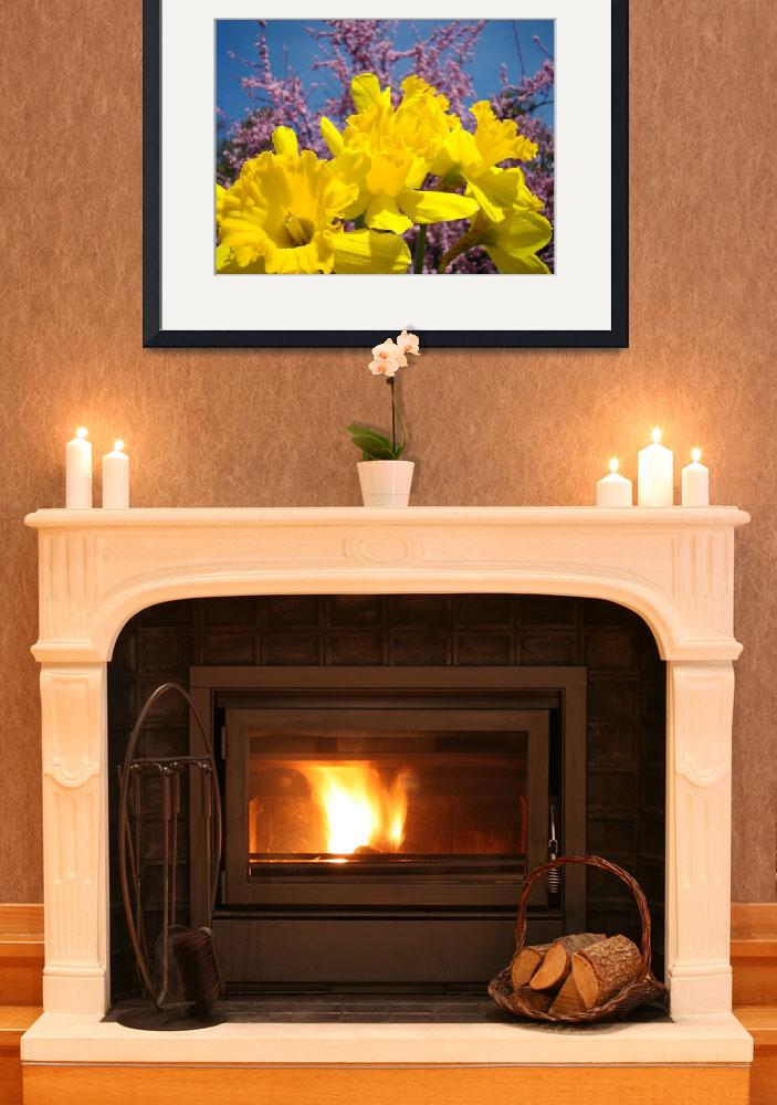 """""""Daffodil Nature Spring Art Prints Pink Blossoms""""  (2010) by BasleeTroutman"""