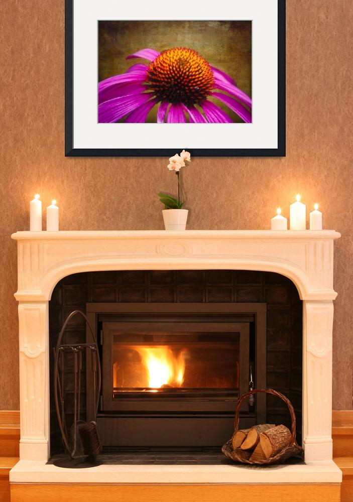 """""""Purple Coneflower on Canvas&quot  (2012) by George_Oze"""