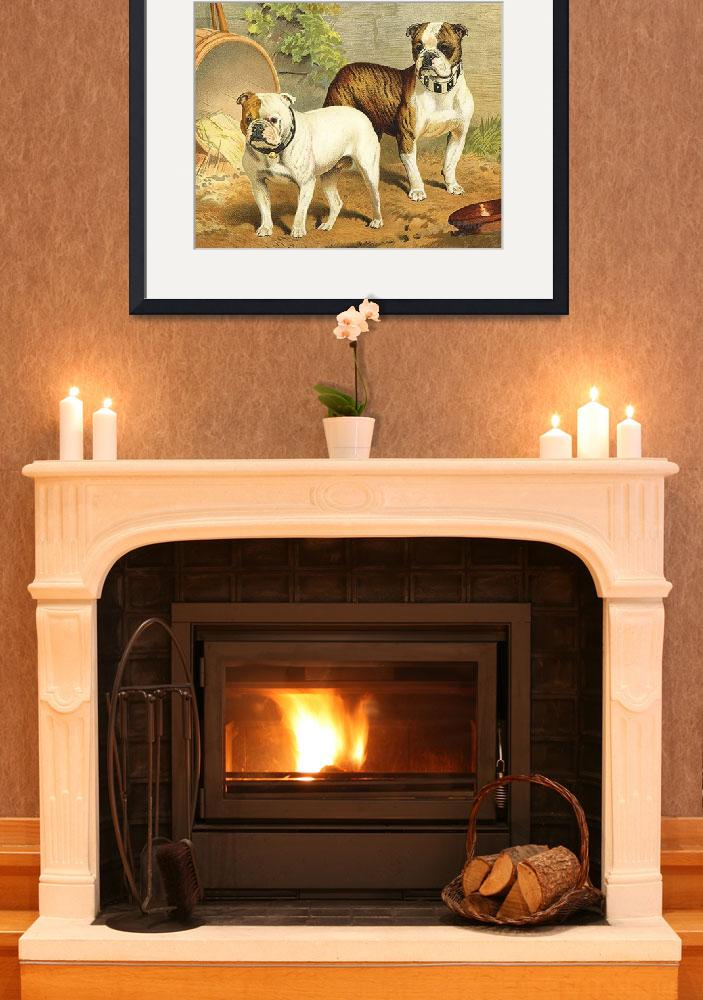 """""""Vintage Painting of English Bulldogs&quot  by Alleycatshirts"""
