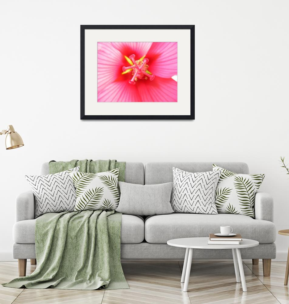 """""""Heart of the Hibiscus""""  by SweetRascal"""